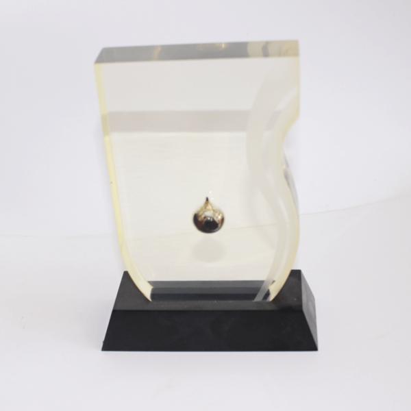 Acrylic Display Trophy