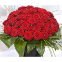 50 Upper Class Red Roses & Pearls